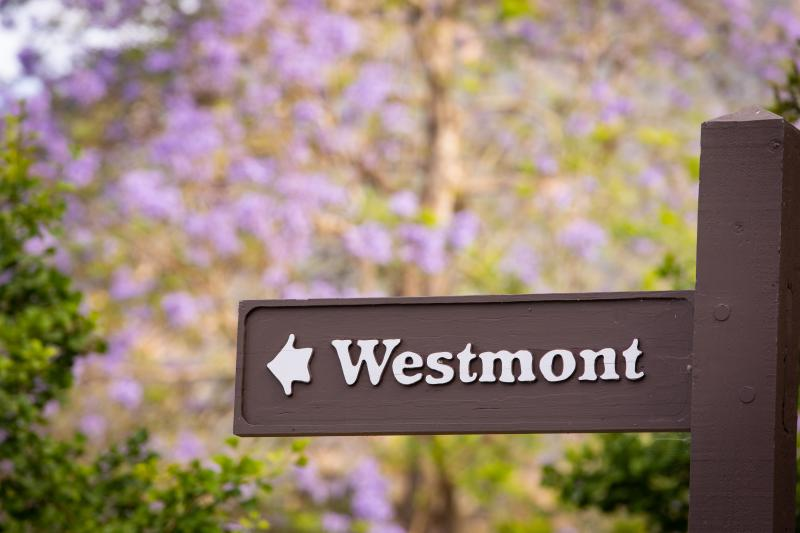 This way to Westmont